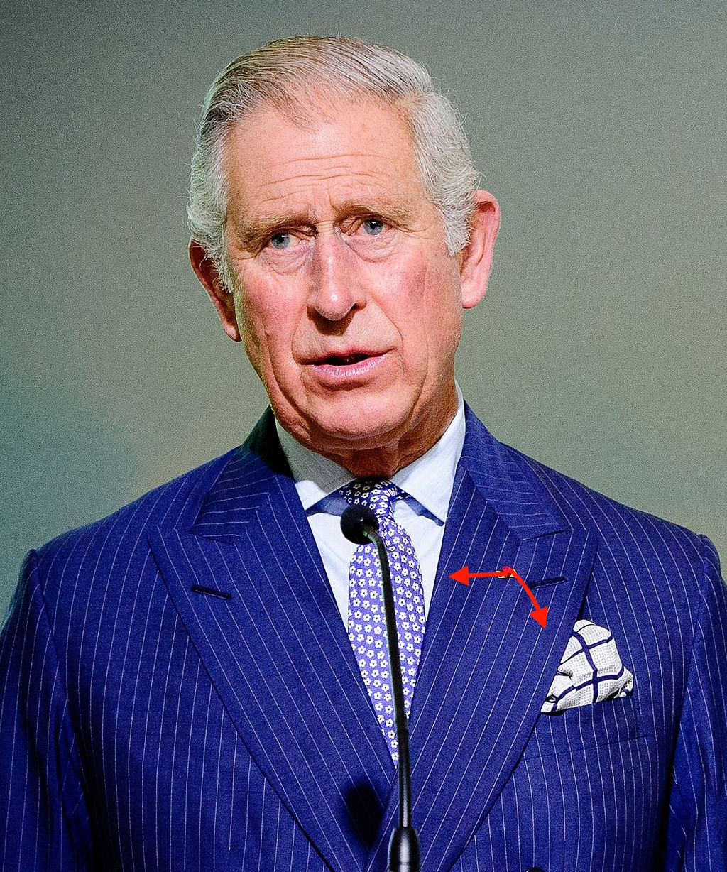 Charles,_Prince_of_Wales_at_COP21.jpg